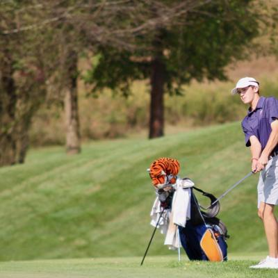 Tigers in the hunt after opening round