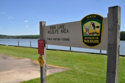Open Source: Why are there so many dead carp in Knox Lake?