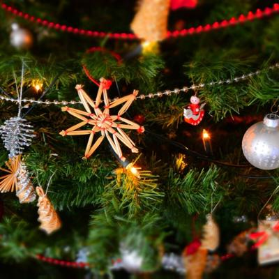 Don't just toss that Christmas tree on the curb. Here are some ideas to consider