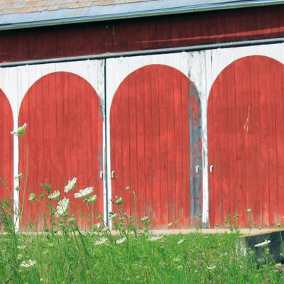 Native Son: The Shrine Barns of Richland County
