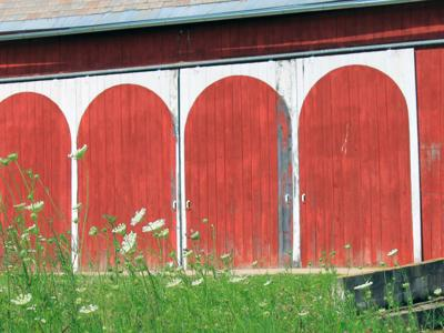 Native Son: The Shrine Barns of Richland County