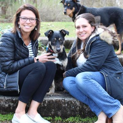Local vet rescues stray canine from the Caribbean