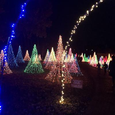 Mansfield man wants to bring holiday light magic to Richland County courthouse