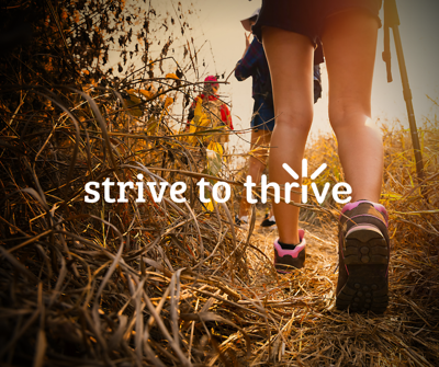 Strive to thrive blog #5