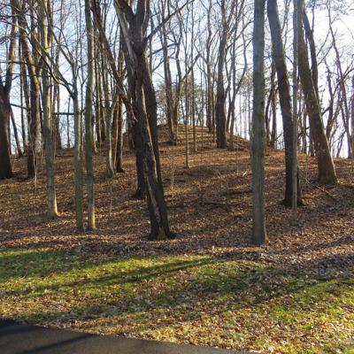Fredericktown, city of mounds: The mounds of Knox County Part II