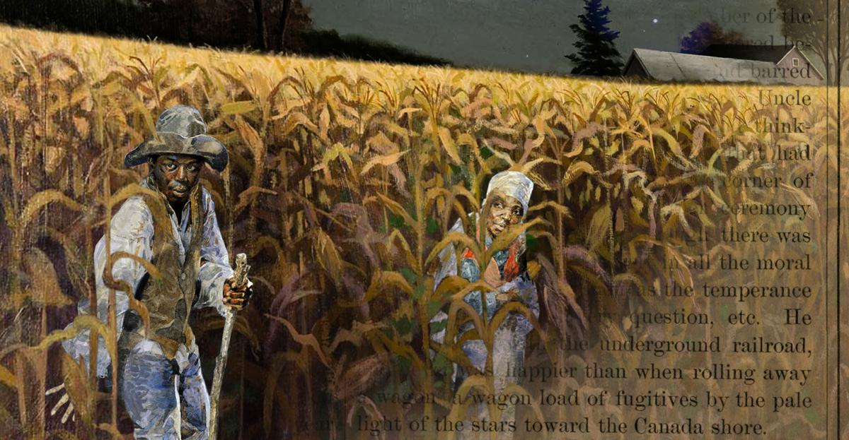 Sam McCluer's corn field