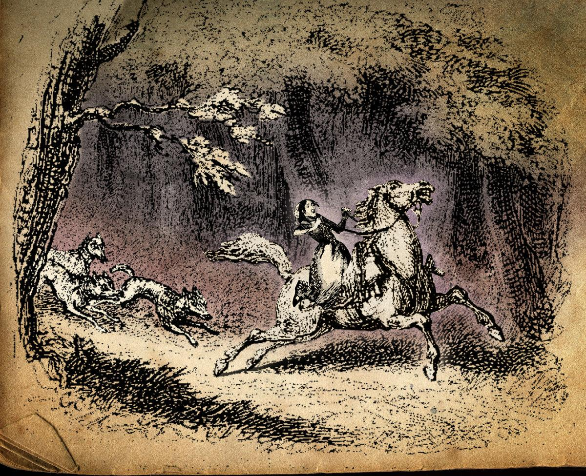 Wolves give chase to Rachel Gatton 1820