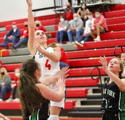 Shelby's Niese, Baker earns spots on All-MOAC girls basketball team
