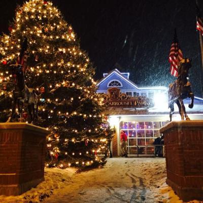 Mansfield seeks 2020 Christmas tree donation