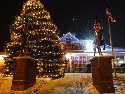 Mansfield seeks a 2020 Christmas Tree donation