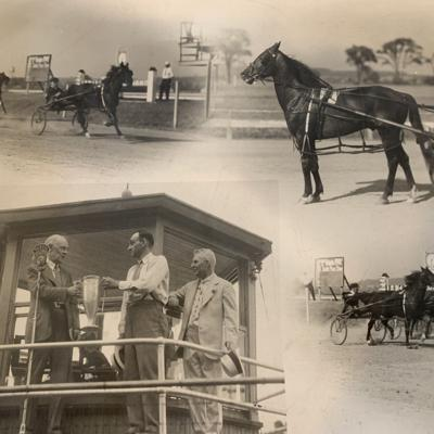 Peter At Law was an Ashland equine champion