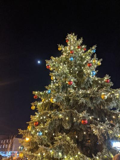 2019 Mansfield Christmas Tree