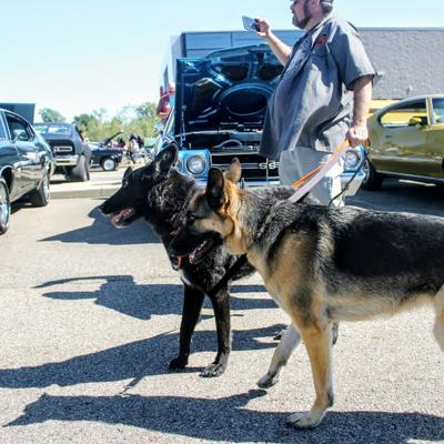 Car show raises $11,000 for The Humane Society of Richland County