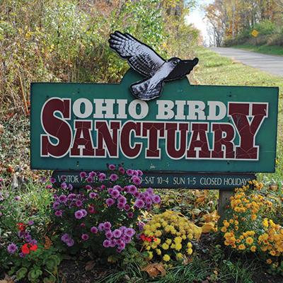 Kingwood, Malabar, Ohio Bird Sanctuary among local attractions open to welcome visitors