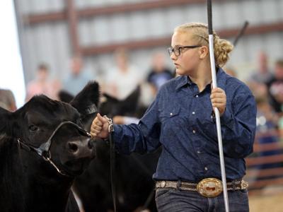 Crawford County Fair set to begin July 20
