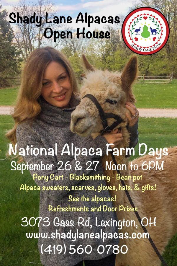 Shady Lane Alpca Farm
