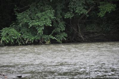Kokosing River water