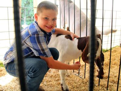 Junior Fair kicks off in Bellville