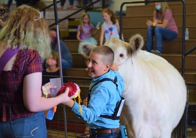 GALLERY: Wednesday at the 2020 Richland County Fair