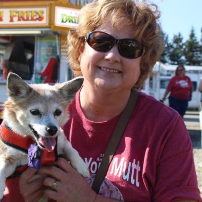 Strutt Your Mutt canine festival set for Aug. 17