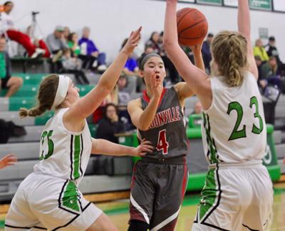 Loudonville, Lucas & Buckeye Central girls top All-Ohio Division III-IV list