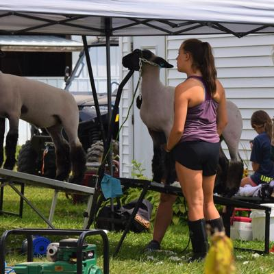 4-H youngsters continue to shine at Richland County Fair