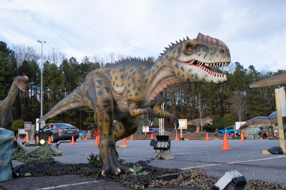 DinoSafari 2021 Northpoint Mall-103.jpg