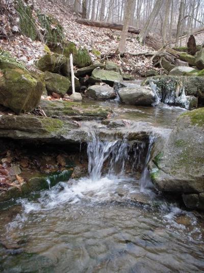 Watterfalls at Niss Waterfall Preserve