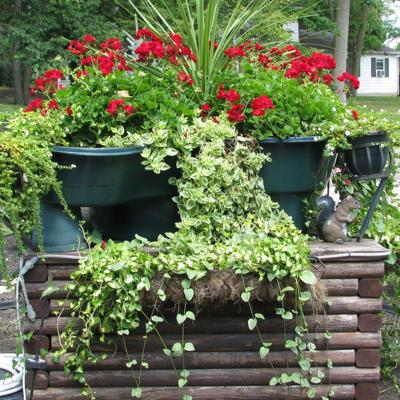 Mansfield beautification award nominations accepted through July 31