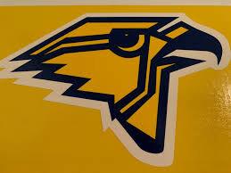 Hillsdale Falcons logo