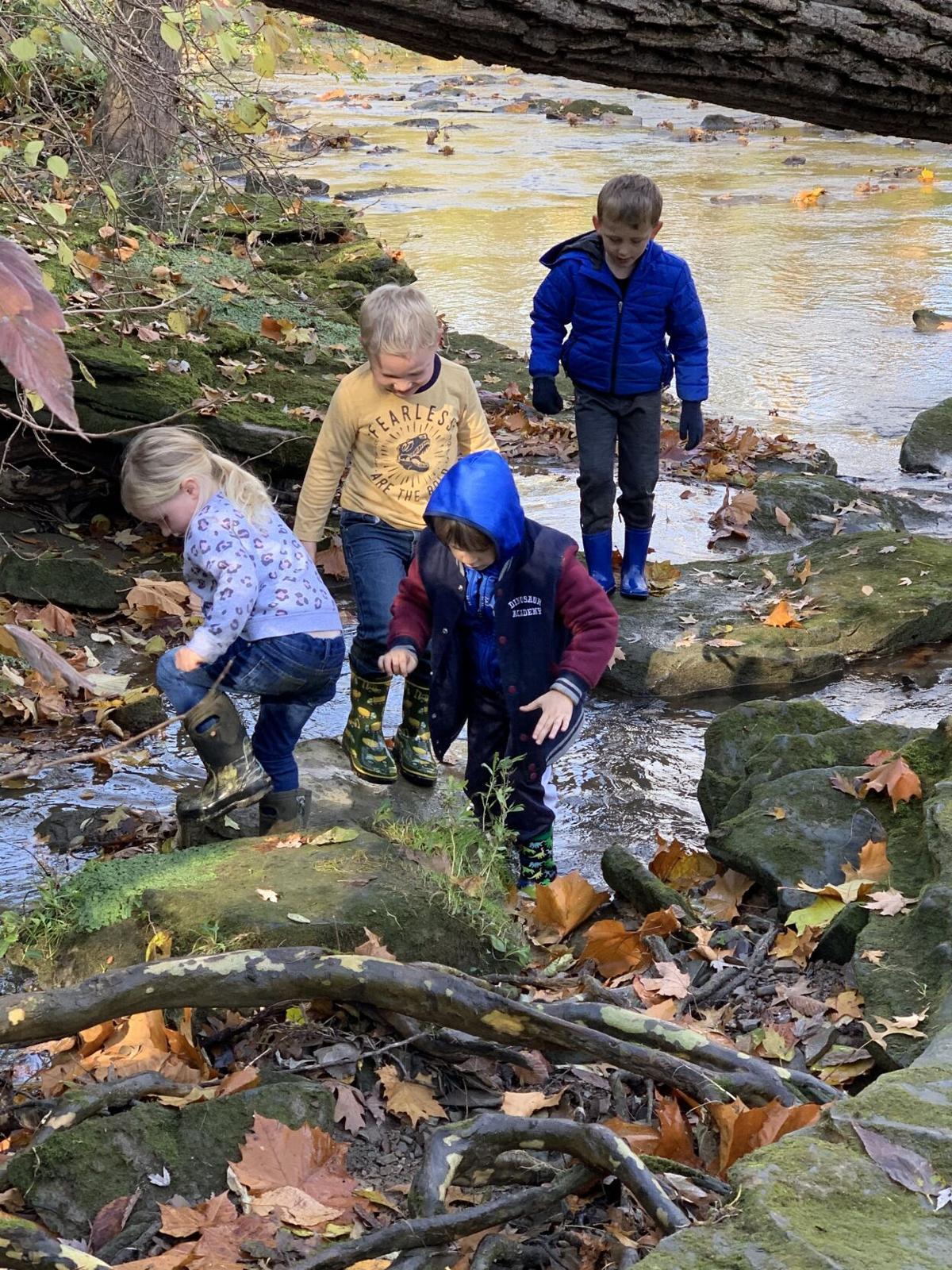 Forest Friends in Sandusky River