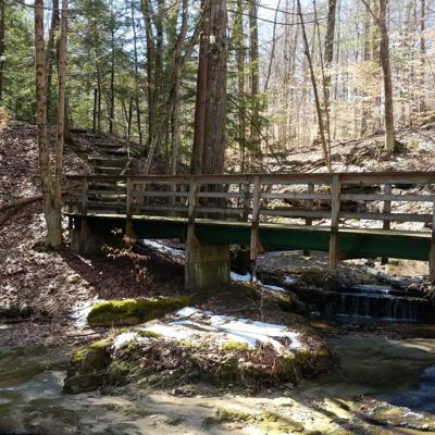 Fleming Falls bridge