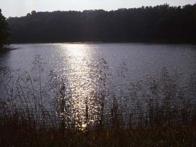 Mount Gilead State Park among Ohio's best-kept secrets