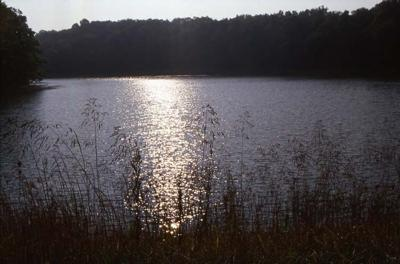 Mount Gilead State Park