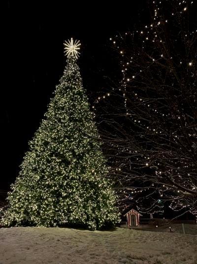 GALLERY: Christmas History