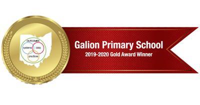 Galion Primary School gold winner award