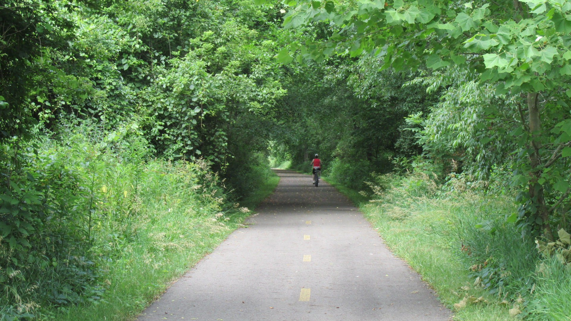 Section of B&O Trail to be closed Wednesday morning