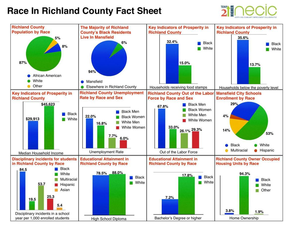 Race in Richland County Fact Sheet