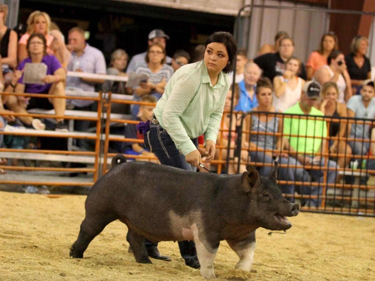 Millenbaugh tops at Crawford County Fair's market hog show
