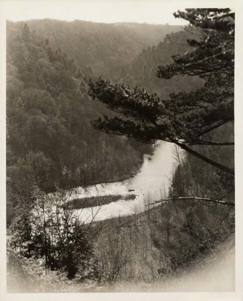 Clear Fork Gorge