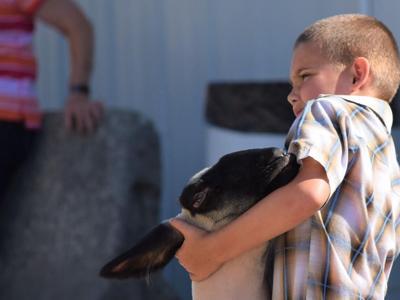 2020 Ashland County Fair opens Sunday