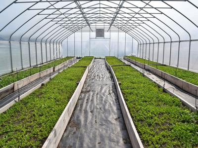 Grow Malabar project will bring urban agriculture to Mansfield City Schools