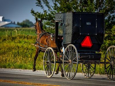 Webinar on study of Amish future slated for Aug. 13 via Zoom