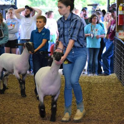 Richland County Junior Fair board honors local youngsters