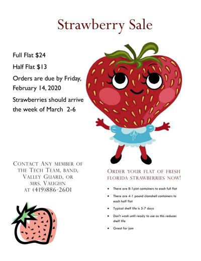 Clear Fork students launch annual strawberry sale fundraiser