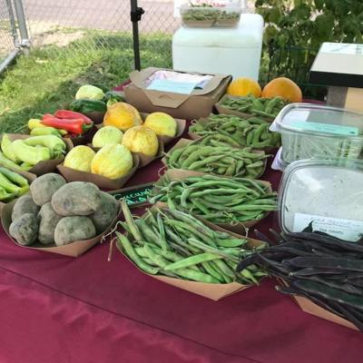 Vouchers available for Senior Farmers' Market Nutrition Programs in Richland County