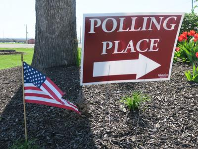 Accountants who serve as poll workers will earn education credits