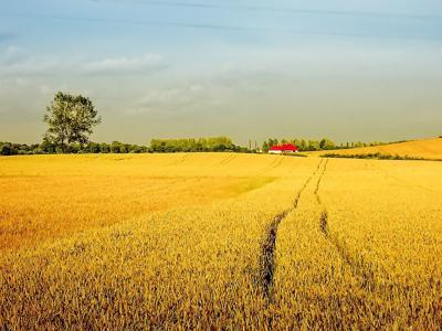 Field farming