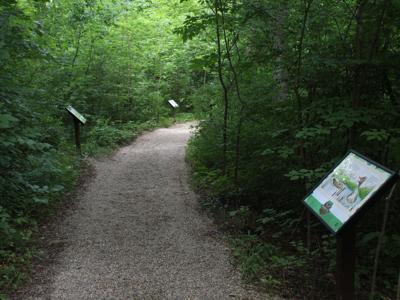 Storybook Trail debuts at Kingwood Center Gardens
