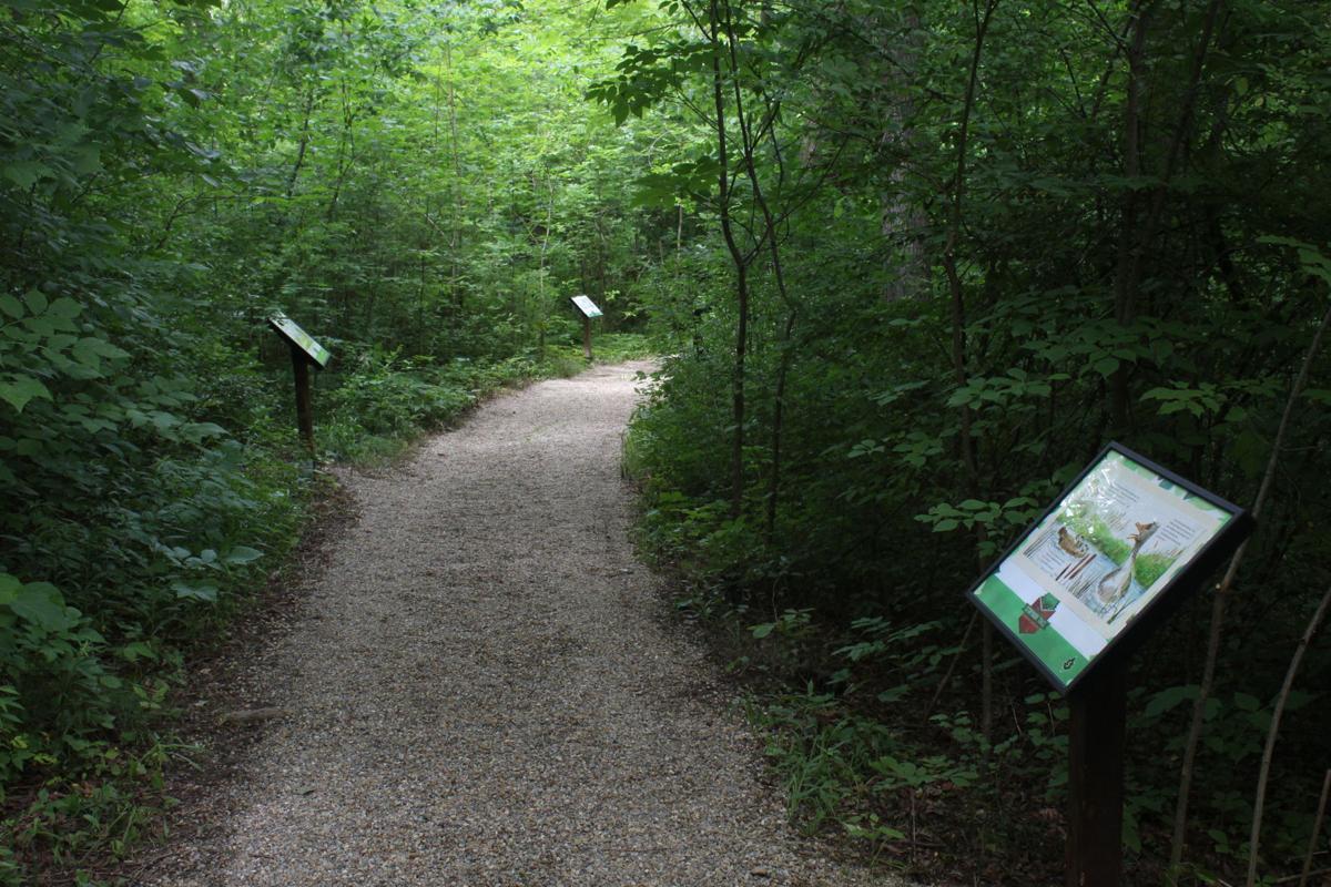 Kingwood Storybook Trail